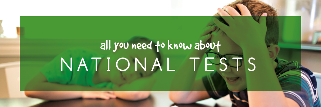 Each year we are asked how we prepare our pupils for the National Tests.